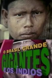 Small brasil grande  videocamp